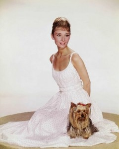 Audrey Hepburn was a dog lover