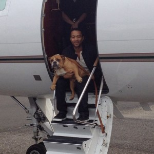 John Legend's dog Puddy!