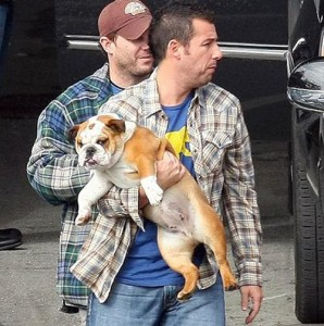Seriously awesome name for Adam Sandler's dog