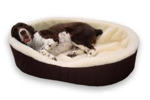 good bed for large dogs