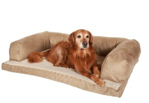 top Sofa Bed For Dogs