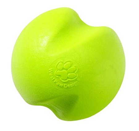 amazing dog toys for big dogs