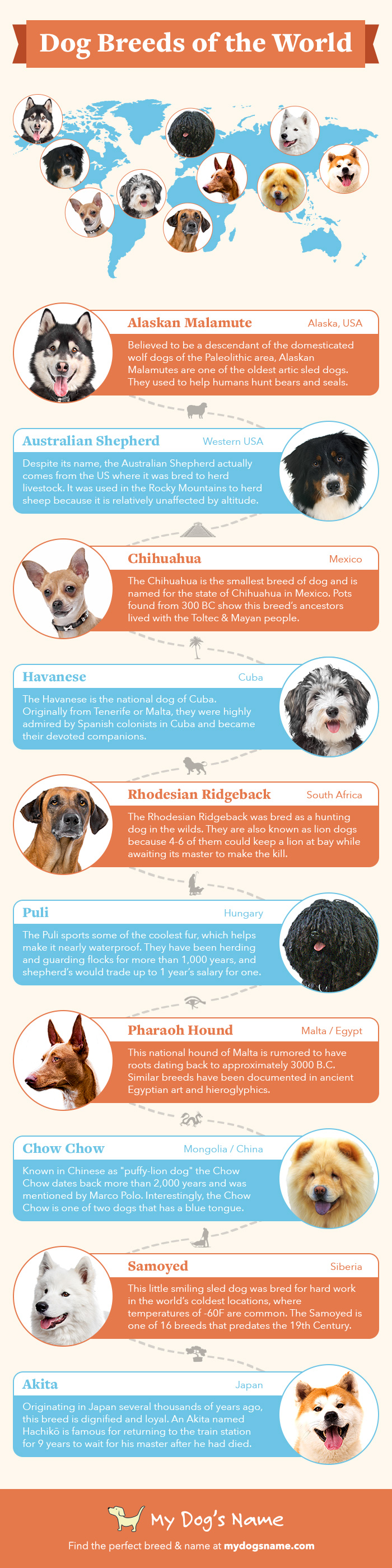 dog-breeds-of-the-world