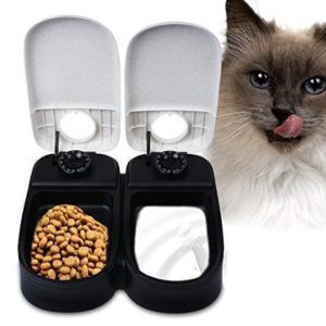 best pet feeder