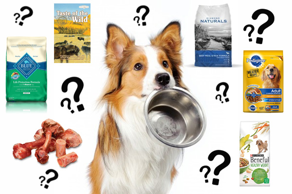 Health Diet Dog Food Review