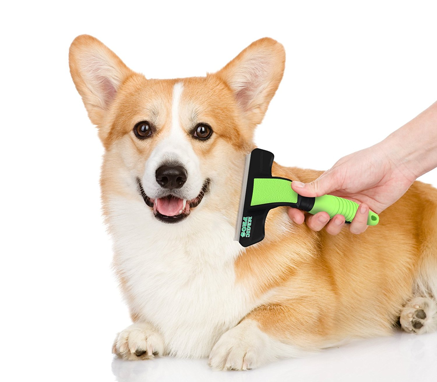 Best Dog Deshedder