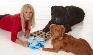Best Stimulating Dog Toys - The Most Durable, Fun and