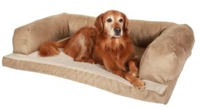 Finding The Right Sofa Bed For Dogs Can Be A Daunting Task If You Do Not  Know What You Are Looking For. There Are Many Features To Consider When  Choosing ...