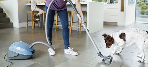 When Ping Around For The Best Vacuum Tile Floors And Pet Hair There Are Some Things You Need To Keep In Mind Want Ensure That